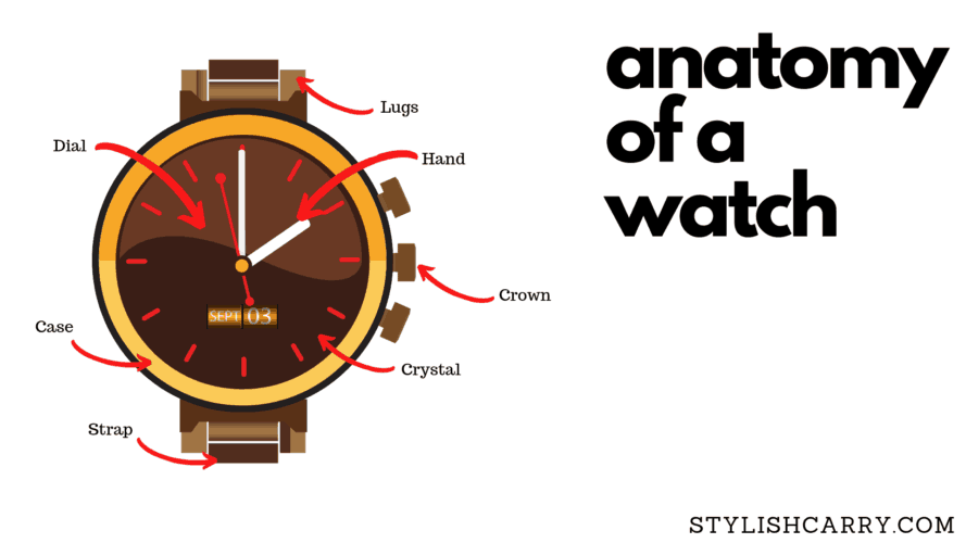 The anatomy of a watch